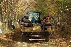 Family Hayrides to the Pumpkin Patch